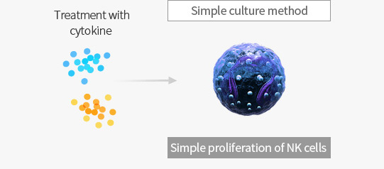 Treatment with cytokine  - Simple culture method (Simple proliferation of NK cells)